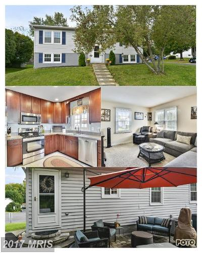 Leesburg Single Family Home For Sale: 128 Oak View Drive SE