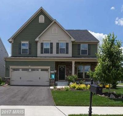Aldie Single Family Home For Sale: 41597 Hoffman Drive