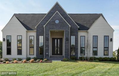 Aldie Single Family Home For Sale: 41211 Dales Pony Lane