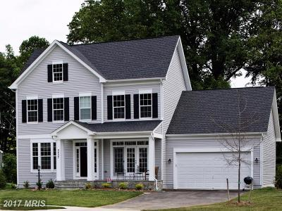Leesburg Single Family Home For Sale: Amy Meadow Place