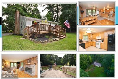Lovettsville Single Family Home For Sale: 10788 Georges Mill Road