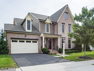 Ashburn Single Family Home For Sale: 23324 Morning Walk Drive