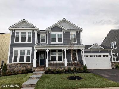 Leesburg Single Family Home For Sale: 1003 Akan Street SE