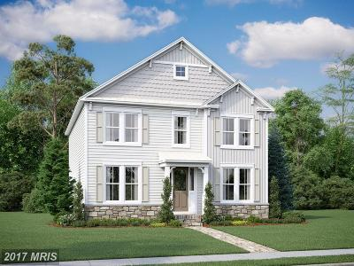 Leesburg Single Family Home For Sale: 1007 Themis Street SE
