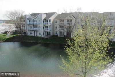 Ashburn Condo For Sale: 20596 Cornstalk Terrace #302