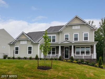 Leesburg Single Family Home For Sale: 41694 Wakehurst Place