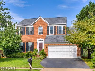 Ashburn Single Family Home For Sale: 20690 Pomeroy Court