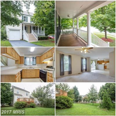 Leesburg Single Family Home For Sale: 524 North Street NE