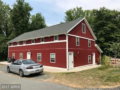 Round Hill Rental For Rent: 19 Bridge Street #200