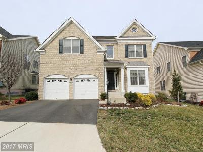 Ashburn Single Family Home For Sale: 43268 Barnstead Drive