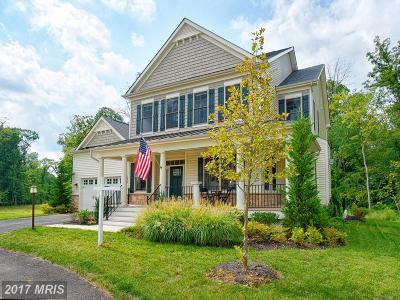 Aldie Single Family Home For Sale: 24826 Barrington Grove Court