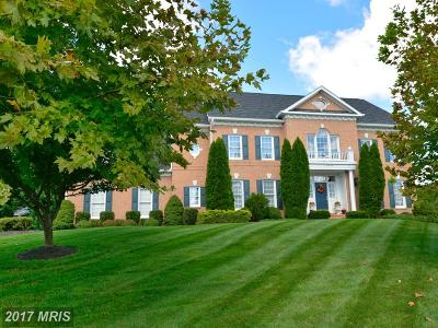 Loudoun Single Family Home For Sale: 22349 Belle Terra Drive