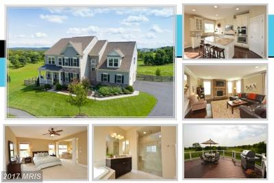 Leesburg Single Family Home For Sale: 41859 Farnborough Place