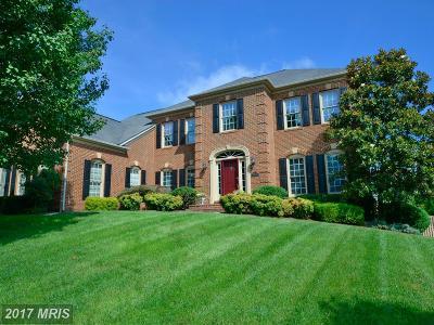 Ashburn Single Family Home For Sale: 21028 Glendower Court