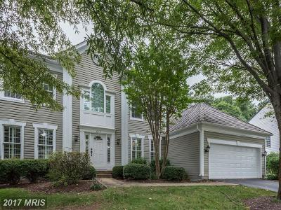 Leesburg Single Family Home For Sale: 613 Stribling Court SW