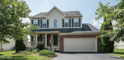Aldie Single Family Home For Sale: 41743 Experience Way
