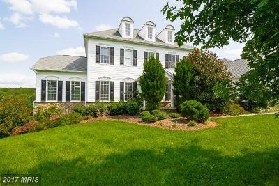 Loudoun Single Family Home For Sale: 17212 Cannonade Drive