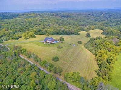 Loudoun Single Family Home For Sale: 22077 Oatlands Road