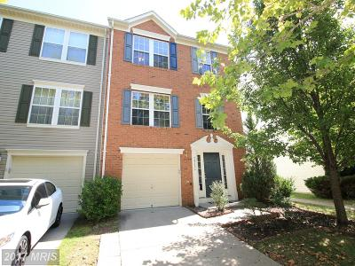 Chantilly Rental For Rent: 26124 Lands End Drive