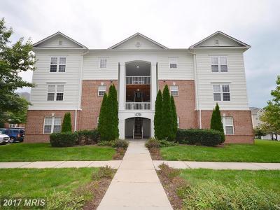 Ashburn Condo For Sale: 22706 Blue Elder Terrace #301