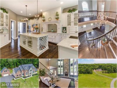 Loudoun Single Family Home For Sale: 20480 Stone Fox Court