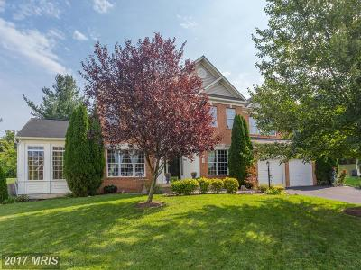Purcellville Single Family Home For Sale: 529 Skyline Drive