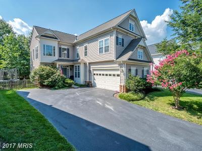 Broadlands Single Family Home For Sale: 21993 Stonestile Place