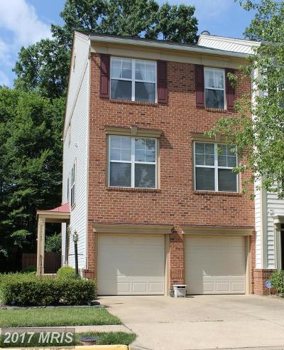 Chantilly Rental For Rent: 43101 Holtby Square