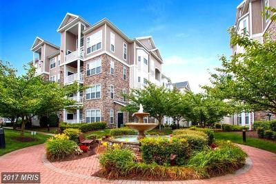 Leesburg Condo For Sale: 508 Sunset View Terrace SE #203