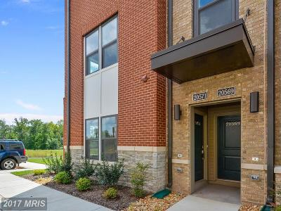 Ashburn Condo For Sale: 20571 Milbridge Terrace #20571