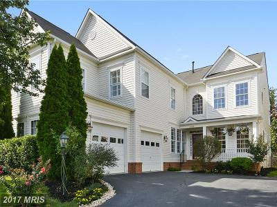 Broadlands Single Family Home For Sale: 21809 Wingfoot Court