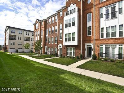 Ashburn Townhouse For Sale: 42784 Lauder Terrace