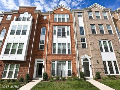 Ashburn Condo For Sale: 42783 Burrell Square #UPPER