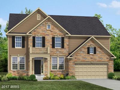 Leesburg Single Family Home For Sale: 40356 Rubin Lane