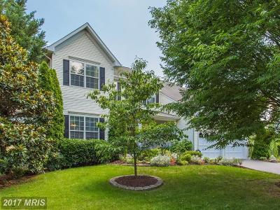 Leesburg Single Family Home For Sale: 352 Lake View Way NW