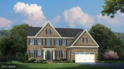 Loudoun Single Family Home For Sale: Amesfield Place