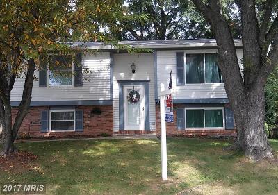 Leesburg Single Family Home For Sale: 910 Marshall Drive NE