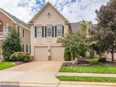Loudoun Single Family Home For Sale: 20271 Island View Court