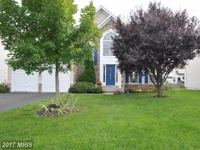 Leesburg Single Family Home For Sale: 105 Shana Drive