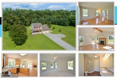 Loudoun Single Family Home For Sale: 43430 Evans Pond Road