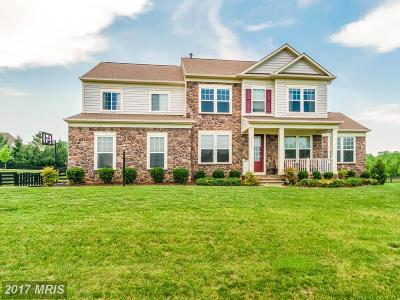 Loudoun Single Family Home For Sale: 15639 Limestone Branch Place