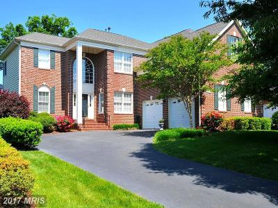 Ashburn Single Family Home For Sale: 19849 Bethpage Court