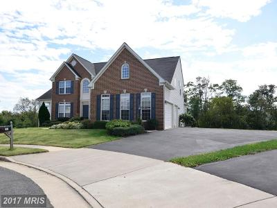 Lovettsville Single Family Home For Sale: 34 Lange Drive