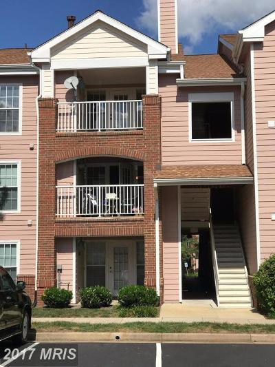Ashburn Condo For Sale: 20965 Timber Ridge Terrace #304