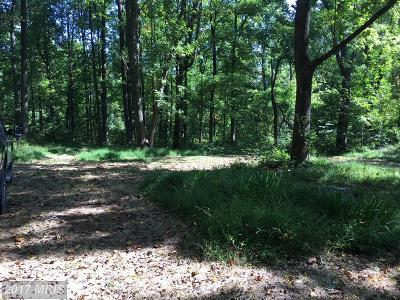 Residential Lots & Land For Sale: 19802 Old Blueridge Road