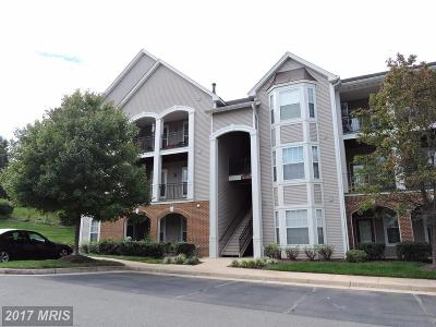 Sterling Condo For Sale: 20453 Chesapeake Square #200