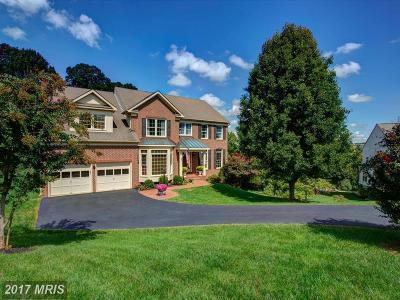 Leesburg Single Family Home For Sale: 609 Beauregard Drive SE