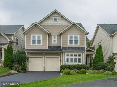 Leesburg Single Family Home For Sale: 284 Ariel Drive NE