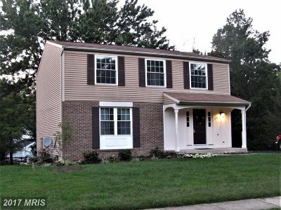 Loudoun Single Family Home For Sale: 240 Silverleaf Drive