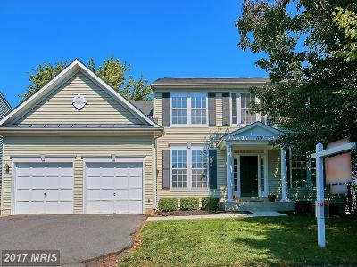 Loudoun Single Family Home For Sale: 110 Pheasant Place SW